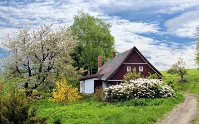 Forny boligens udseende med tagmaling